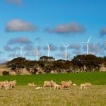 Keppel Prince awarded SA wind farm contract