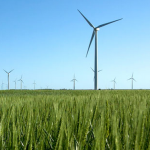 Tassie's biggest wind farm opens