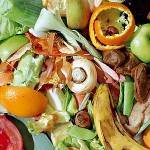Packaging critical in reducing food waste: study