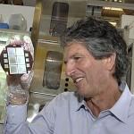 Green steel and solar cells win Australian innovation awards
