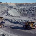 Vale push to mine Hunter Valley biodiversity offset areas