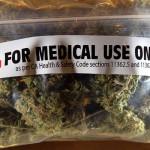 Miners gets new permits to grow marijuana
