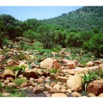 ​Scientists narrow down how Witwatersrand gold deposits formed