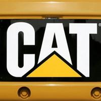 CAT-resize.jpg