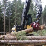 Satco processing and felling heads from Caterpillar
