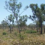 Paladin sells Australian non-core exploration projects