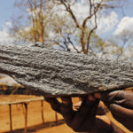 Battery Minerals secures Montepuez mining licence